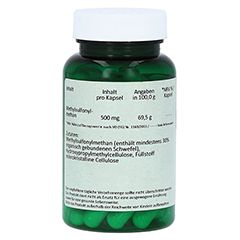 MSM 500 mg Kapseln 60 Stück - Rechte Seite