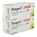 Pangrol 20000 200 Stück N3