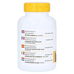 OPC 200 Bioflavonoide Kapseln 250 St�ck - Rechte Seite