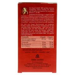 ROTER GINSENG 400 mg 8% von Terra Mundo Kapseln 40 Stück - Rückseite