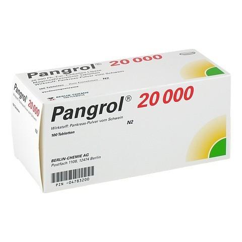 Pangrol 20000 100 Stück N2