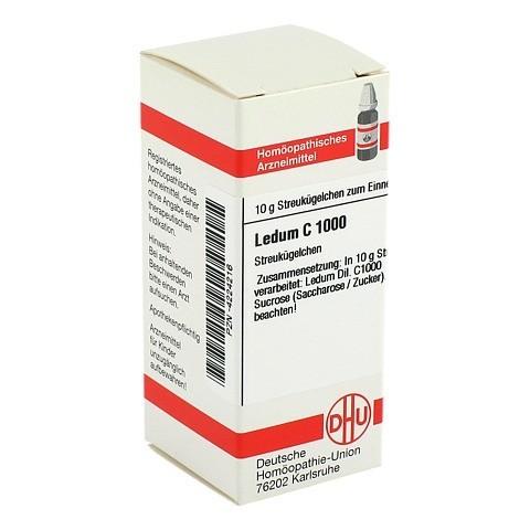 LEDUM C 1000 Globuli 10 Gramm N1