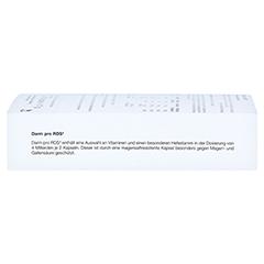 DARM PRO RDS Reizdarm magensaftresistente Kapseln 60 St�ck - Linke Seite