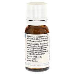MAGNESIUM PHOSPHORICUM C 30 Globuli 10 Gramm N1 - Rückseite