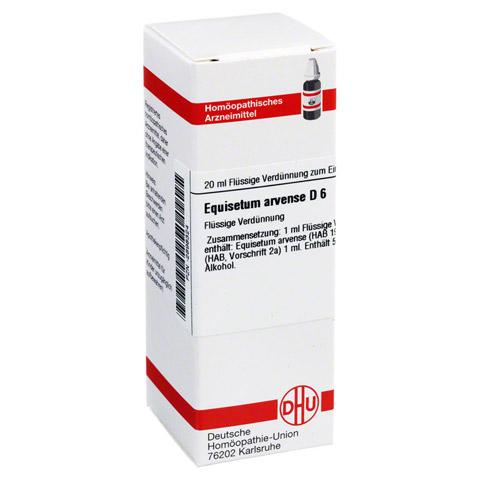 EQUISETUM ARVENSE D 6 Dilution 20 Milliliter N1