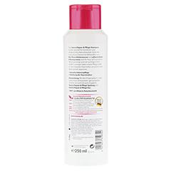 LAVERA Haar Repair & Pflege Shampoo 250 Milliliter - Rückseite