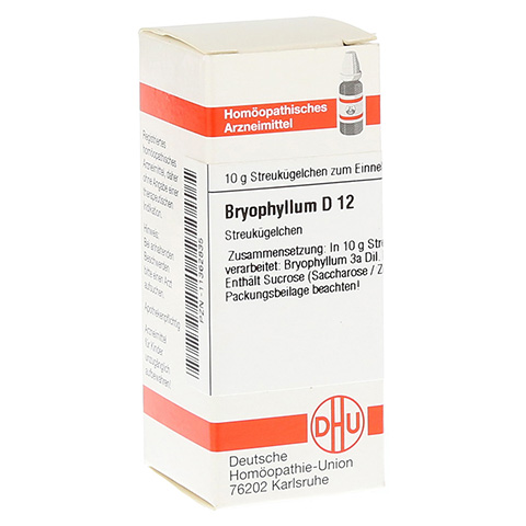 BRYOPHYLLUM D 12 Globuli 10 Gramm N1