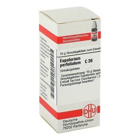 EUPATORIUM PERFOLIATUM C 30 Globuli 10 Gramm N1