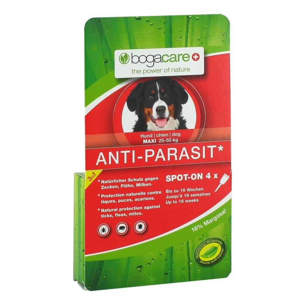 erfahrungen zu bogacare anti parasit spot on hund gro 4x2. Black Bedroom Furniture Sets. Home Design Ideas