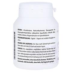 HYALURONSÄURE 100 mg Gelenk Kapseln 100 Stück - Rechte Seite