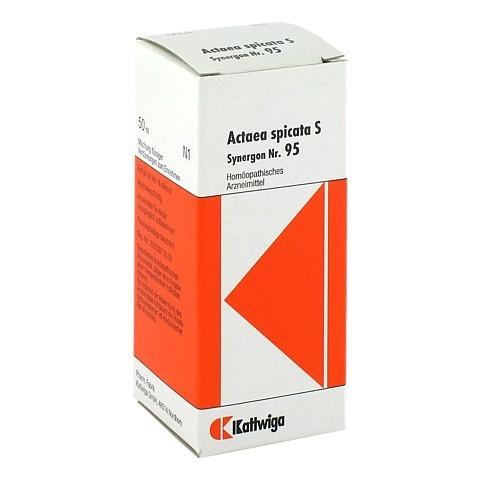 SYNERGON KOMPLEX 95 Actaea spicata S Tropfen 50 Milliliter N1