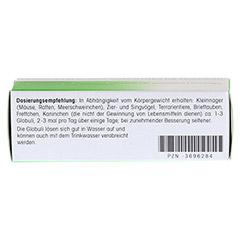REVET H 11 Globuli f.Heimtiere 10 Gramm - Rückseite