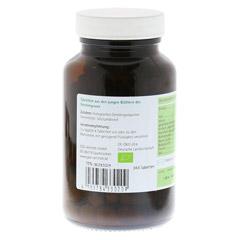 GERSTENGRAS 500 mg Bio Tabletten 240 Stück - Rechte Seite