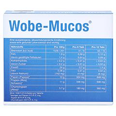 WOBE-MUCOS magensaftresistente Tabletten 120 Stück - Rückseite