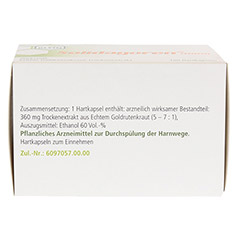 Solidagoren mono Hartkapseln 100 Stück N3 - Unterseite