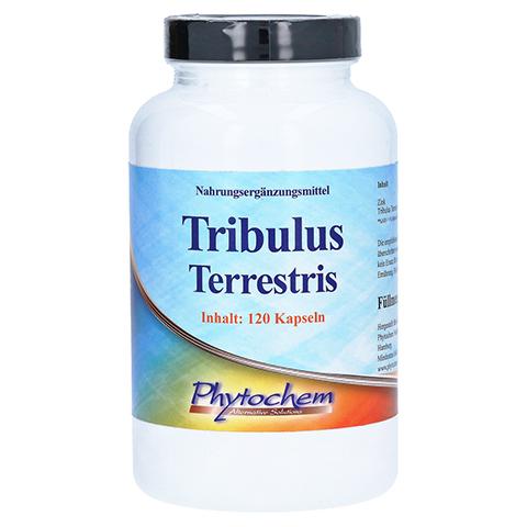 Tribulus terrestris 1200 mg Kapseln 120 St�ck