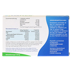 SANFERIN Tabletten 20 St�ck - R�ckseite