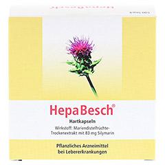 HepaBesch Hartkapseln 100 St�ck N3 - Vorderseite