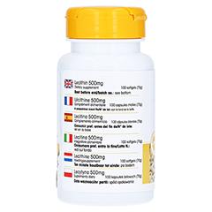 LECITHIN 500 mg Kapseln 100 Stück - Rechte Seite