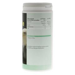GLUTAMIN 100% Pur Pulver 1000 Gramm - Rechte Seite