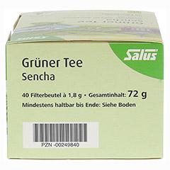 GRÜNER TEE Bio Salus Filterbeutel Großpackung 40 Stück - Rechte Seite