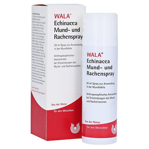 Echinacea Mund- und Rachenspray 50 Milliliter N1