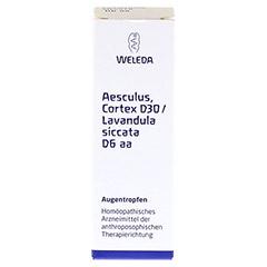 AESCULUS CORTEX D 30/Lavandula D 6 aa Augentropfen 10 Milliliter N1 - Vorderseite