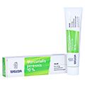 MERCURIALIS PERENNIS 10% Salbe 70 Gramm N2
