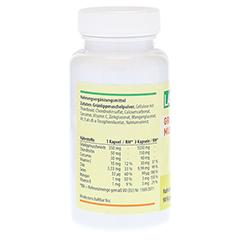 GRÜNLIPPMUSCHEL Pulver 1050 mg/Tg Kapseln 90 Stück - Rechte Seite