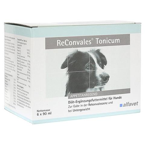 RECONVALES Tonicum für Hunde 6x90 Milliliter