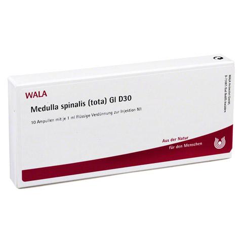 MEDULLA SPINALIS TOTA GL D 30 Ampullen 10x1 Milliliter N1