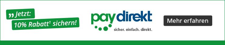 Teaser Paydirekt