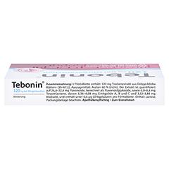 Tebonin 120mg bei Ohrger�uschen 30 St�ck N1 - Oberseite