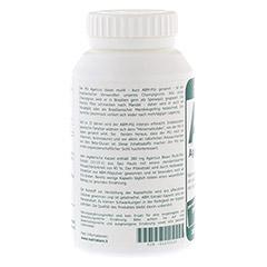 ABM Agaricus Blazei Murill Extrakt vegetar.Kps. 200 Stück - Linke Seite