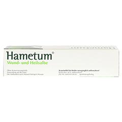 Hametum Wund- und Heilsalbe 200 Gramm - Oberseite