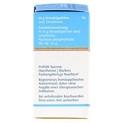 BIOCHEMIE DHU 9 Natrium phosphoricum D 6 Globuli 10 Gramm N1 - Linke Seite