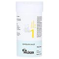 BIOCHEMIE Pfl�ger 1 Calcium fluoratum D 12 Pulver 100 Gramm N2