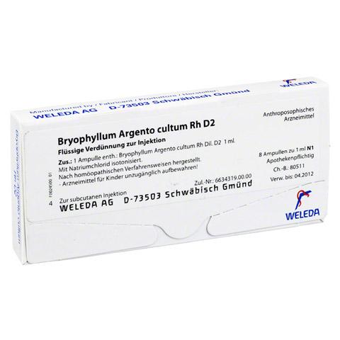 BRYOPHYLLUM ARGENTO cultum Rh D 2 Ampullen 8x1 Milliliter N1
