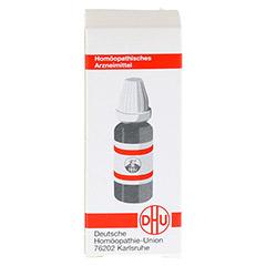 LM NATRIUM sulfuricum III Dilution 10 Milliliter N1 - R�ckseite