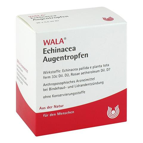 ECHINACEA AUGENTROPFEN 30x0.5 Milliliter N1