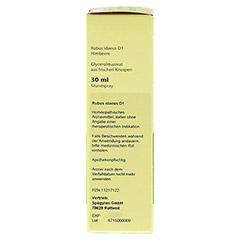 GEMMO Rubus idaeus D1 Spray 30 Milliliter N1 - Rechte Seite