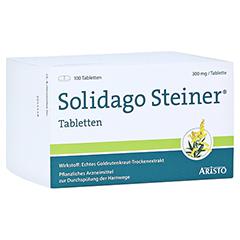 Solidago Steiner 100 Stück