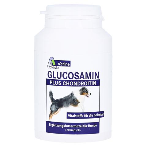 GLUCOSAMIN+CHONDROITIN Kapseln für Hunde 120 Stück