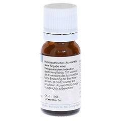 SYMPHYTUM OFFICINALE D 6 Globuli 10 Gramm N1 - Rückseite