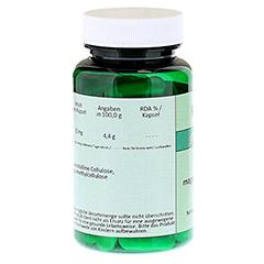 NADH 20 mg magensaftresistente Kapseln 60 Stück - Linke Seite