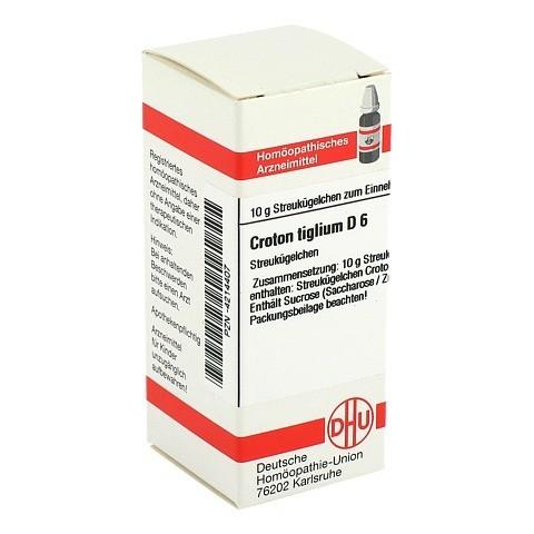 CROTON TIGLIUM D 6 Globuli 10 Gramm N1