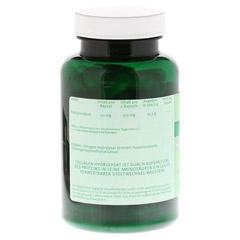 HYALURONSÄURE 50 mg Kapseln 120 Stück - Rückseite