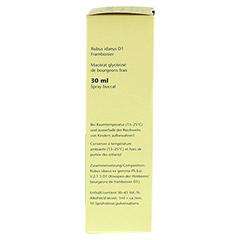 GEMMO Rubus idaeus D1 Spray 30 Milliliter N1 - Linke Seite