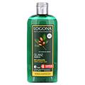 LOGONA Glanz Shampoo Bio-Argan�l 250 Milliliter