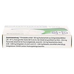 Gingium intens 120mg 30 Stück N1 - Unterseite
